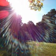 Sun glare